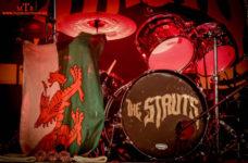 struts-drum-head